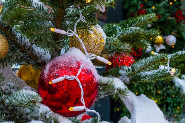 Migliori Alberi di Natale